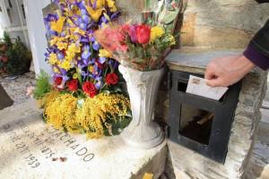 Flores rojas, amarillas y moradas para don Antonio