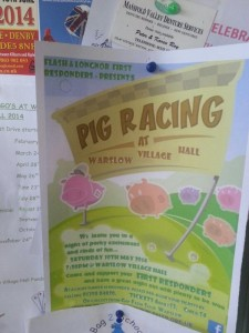 Cartel anunciando la carrera de cerdos del domingo