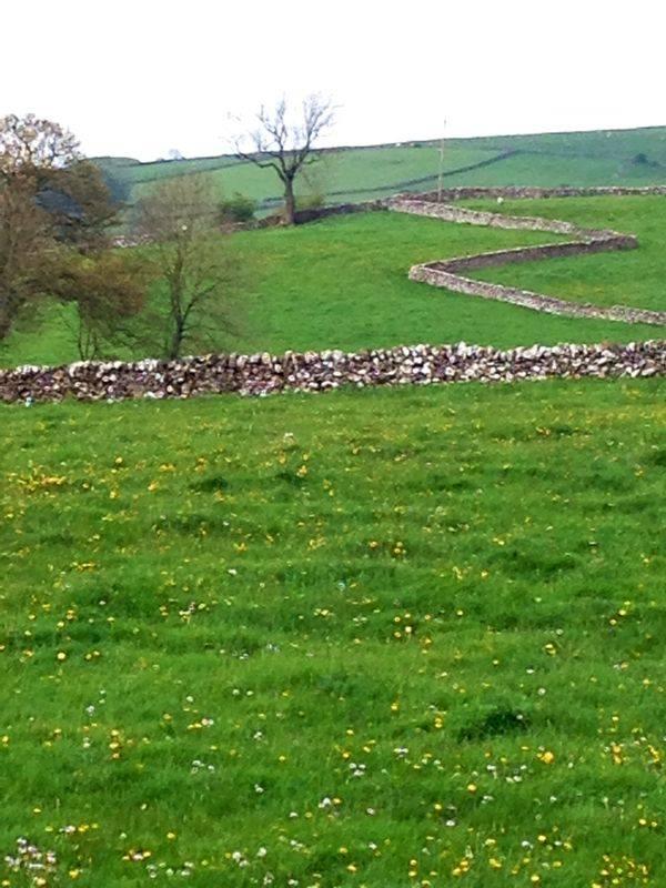 Muros milenarios en zig zag separan los rebaños.